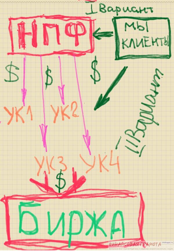 Доходность пенсионных накоплений: чего ожидать от управляющей компании?