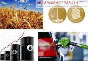 Какие основные виды рынков для инвестирования существуют? Товарно-сырьевой.
